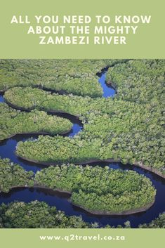Did you know that the mighty Zambezi River is the largest river system in Africa? Need To Know, Did You Know, Travel Companies, Africa, River, Blog, Blogging, Rivers
