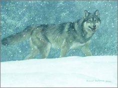 bateman artist | Robert Bateman - Snowfall - Wolf: ART