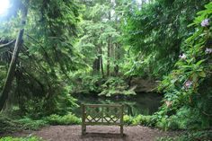 This Little Known Natural Oasis Is Hiding In Washington...And You're Going To…