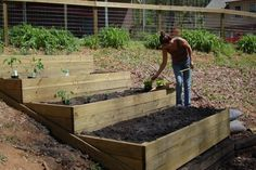 raised beds on a hill – Google Search