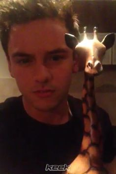 tom talks to giraffes