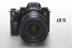 Sony a9's camera Sensor is One of the Best Ever Tested - Learn so much more about it on The Notice Centre
