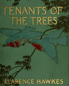 """biodivlibrary: """"We're celebrating the wonder of #trees for #Feathursday! Explore Tenants of the Trees (1907) by Clarence Hawkes, which was contributed for digitization by @amnh to..."""