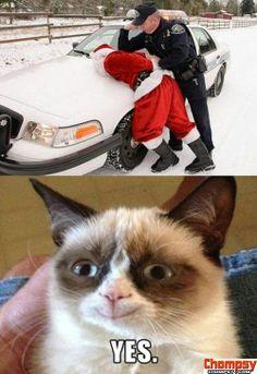 MEME Grumpy Cat vs  Santa Gets Arrested