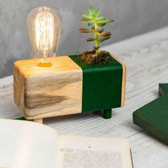 This item is unavailable Cactus Lamp, Cactus Decor, Best Desk Lamp, Natural Structures, Green Cactus, Standard Lamps, Ring Displays, Planting Bulbs, Raw Wood