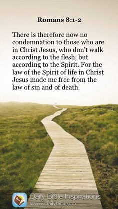 DAILY BIBLE INSPIRATION: There is therefore now no condemnation to those who are in Christ Jesus, who don't walk according to the flesh, but according to the Spirit. For the law of the Spirit of life in Christ Jesus made me free from the law of sin and of death. ~ {ROMANS 8:1-2}