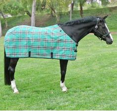 Kensington Signature Collection Textilene Fly Sheet, Traditional Cut – Performance Horse Blankets