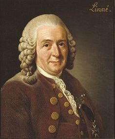 WK 2 - Carl Linnaeus:Father of Taxonomy. His system for naming, ranking, and classifying organisms is still in wide use today His ideas on classification have influenced generations of biologists during and after his own lifetime. Linnaeus loved nature deeply, and always retained a sense of wonder at the world of living things.