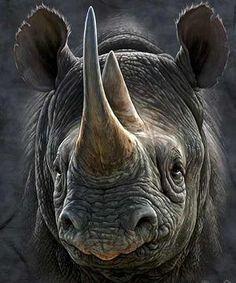 love rhinos!
