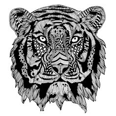 Tiger Fearless On Behance