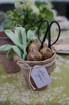 cute party favor or small gardening gift, pot, bulbs, gloves, shears