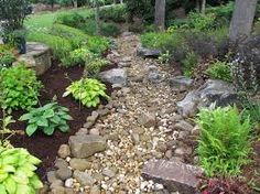 Image result for drought tolerant plants and dry creek bed