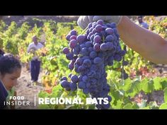 How Portuguese Port Wine Is Made In The Douro Valley | Regional Eats - YouTube Douro Valley, Port Wine, Limoncello, Regional, Season 2, Eat, Alcoholic Drinks, How To Make, Youtube