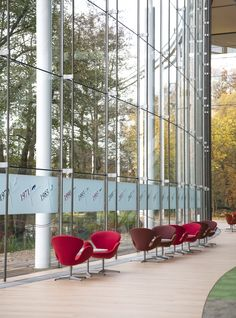 Frosted band of manifestation at the entrance of Astellas Pharma Corporate Branding, Industrial Design, Signage, Entrance, Window, Band, Architecture, Glass, Arquitetura