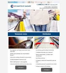 chambre de commerce newsletter - Google Search