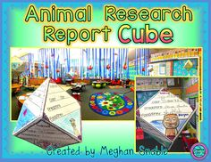 Animal Research Report Cube!
