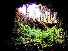 Looking Out of Kaumana Cave: Graphic from Photo by Donald B. MacGowan