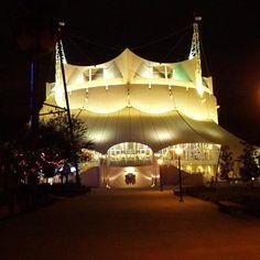 Cirque du Soleil | La Nouba | Orlando #mustgo #tkts #TuliWorld