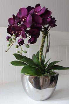Top orchids from the studio tenDOM.pl - - Top orchids from the studio tenDOM. Orchids Garden, Orchid Plants, Exotic Flowers, Beautiful Flowers, Orchid Flower Arrangements, Orquideas Cymbidium, Artificial Orchids, House Plants Decor, Garden Terrarium