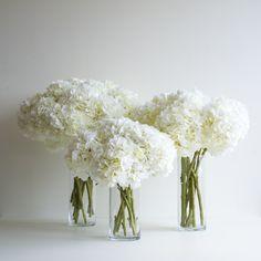 Trio of classic white artificial hydrangea.