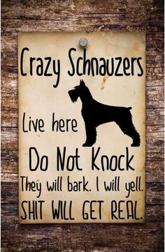 But edited language to clean words. Schnauzer Grooming, Miniature Schnauzer Puppies, Giant Schnauzer, Schnauzer Puppy, Dog Life, Dog Pictures, Puppy Love, Best Dogs, Cute Dogs