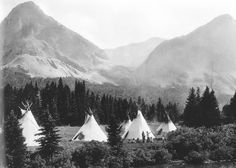 Blackfeet (Pikuni) camp - no date