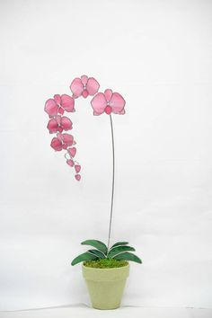 Cette plante de capteur en pot de fleur orchidée en verre est fabriqué à la main d'une manière 3D avec les fleurs montés sur la tige principale découlant des grandes aux petites fleurs avec des bourgeons à la pointe imitant une véritable orchidée. Propos de cet article : • Créé avec un beau verre d'art vaporeux de roses et de verre blanc strié dans les fleurs. Feuilles de verre vert foncé • finir cette création. • Ensemble en pierre, c'est robuste et est conçu pour durer. • Taille…