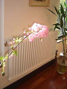 Awesome new slim radiators to replace ancient old steam radiators. Home Radiators, Steam Radiators, Anna And The French Kiss, Steam Boiler, Soho Loft, Reduce Weight, Lose Weight, Water Heating, Ways To Burn Fat