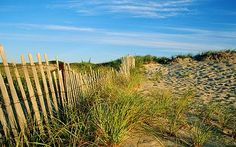 Nantucket beaches & Cape Cod are magical Vacation Wishes, Vacation Destinations, Vacations, The Places Youll Go, Places To Go, Beautiful World, Beautiful Places, Marthas Vinyard, Nantucket Beach