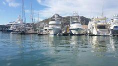 Marina en cabos san lucas Cabo San Lucas, Panama Cruise, Mexico
