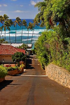Waikiki, Honolulu, Oahu, Hawaii, United States