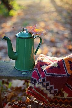 A pot of coffee, a warm comfy throw, my husband and an autumn day all to ourselves. Couldn't ask for anything more.