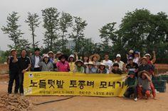 서울 도심에서 짓는 농사 '노들텃밭' http://i.wik.im/70230