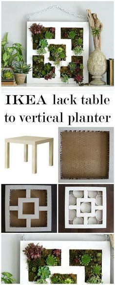 Vertical Succulent Garden Planter: Create this lovely succulent planter with the tabletop of an IKEA Lack table . It will be a perfect decor of your garden whether hang it or lay it flat on a patio table. Vertical Succulent Gardens, Succulent Planter Diy, Vertical Planter, Diy Planters, Garden Planters, Succulents Garden, Planter Ideas, Ikea Hanging Planter, Diy Garden