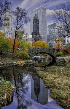 Central Park, New York...one of my favorite places.