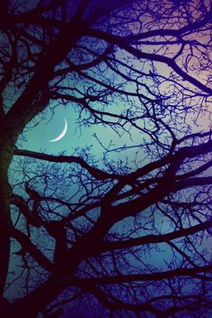 Photography of sky, clouds & star background. Beautiful Moon, Beautiful World, Beautiful Places, Beautiful Pictures, Photo Trop Belle, Shoot The Moon, Moon Pictures, All Nature, Photos Du