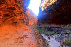 Still Expression : The Bungle Bungles, WA – Walking Grand Canyon, National Parks, Explore, Places, Water, Travel, Outdoor, Gripe Water, Outdoors