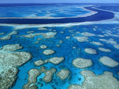 The Great Barrier Reef of Australia is one of the richest, most complex and diverse ecosystems in the world. :) To me it is one of the most beautiful places on Earth.