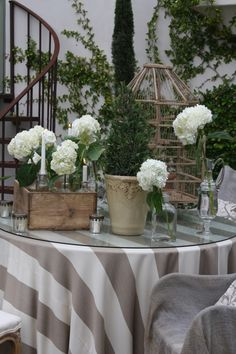 Vignette with stone urn planters, hydrangea, boxwood & bird cage cloche...look for striped fabric at Home fabrics