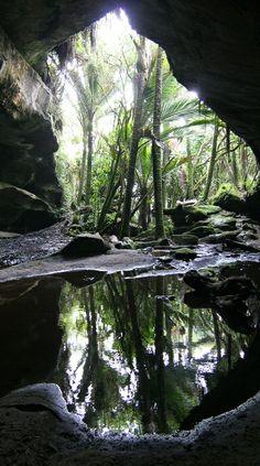 A cave near Punakaiki on the West Coast of New Zealand.