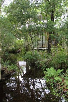 """The Environmental Education Center on Brooker Creek in Brooker Creek Preserve in Tarpon Springs, Florida.  Print available in 4x6"""" to 20x30""""."""