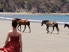 #Rosalyn on the beach among the 'wild horses.' #wildhorses couldn't drag me away.