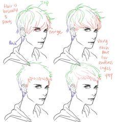 Hair. Male