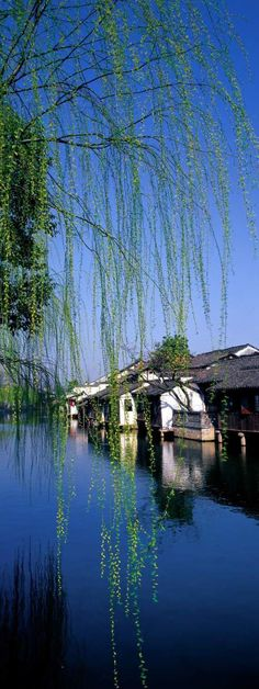 Suzhou! where I've lived for almost six years now and going strong.  I love this place!