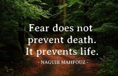 Naguib Mahfouz - Fear does not prevent death, it prevents life - Quote. Naguib Mahfouz was an Egyptian writer who won the 1988 Nobel Prize for Literature. The Words, Great Quotes, Quotes To Live By, Inspirational Quotes, Motivational Quotes, Daily Quotes, Yoga Quotes, Awesome Quotes, Positive Quotes