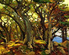 Monterey Cypress; Franz Bischoff (from oceansbridge.com)