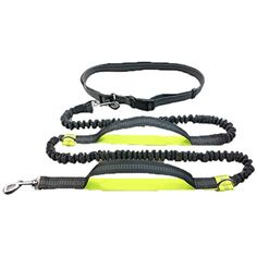 Reflective Pet Dog Traction Rope Elastic Running Jogging Dog Leashes Adjustable Pet Walking Training Waist Belt >>> You can get additional details at the image link. (This is an affiliate link) #Cats