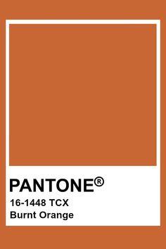 Home Icon Colour 64 New Ideas Brown Pantone, Pantone Orange, Pantone Swatches, Color Swatches, Pantone Colour Palettes, Pantone Color, Pantone Paint, Colour Pallete, Colour Schemes