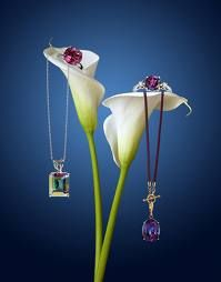 creative jewelry photography - Buscar con Google