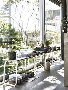 Boho interior inspiration with sustainable living tips and tricks